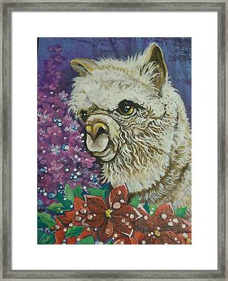 Merry Christmas Alpaca Framed Print