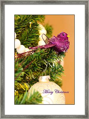 Merry Christmas Framed Print by Angela Comperry