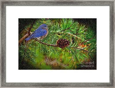 Merry Christmas Card With Bluebird Framed Print
