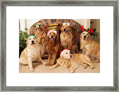 Merry Christmas Framed Print by Lawrence Christopher