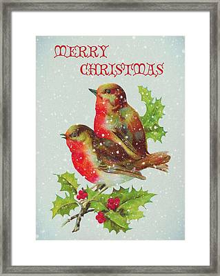 Merry Christmas Snowy Bird Couple Framed Print by Sandi OReilly