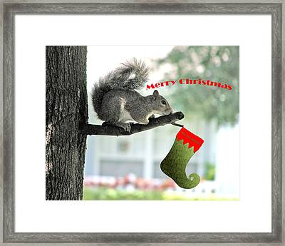 Merry Christmas To All Framed Print by Adele Moscaritolo