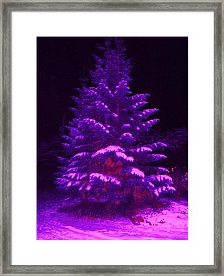 Merry Christmas Tree Framed Print by Laurie Kidd