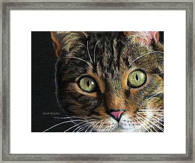 Mesmer Eyes Detail  Framed Print by Sarah Batalka
