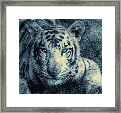 Framed Print featuring the photograph Mesmerized by Annette Hugen