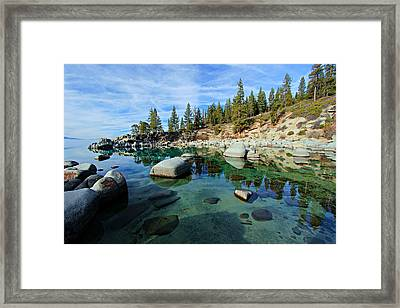 Mesmerized Framed Print
