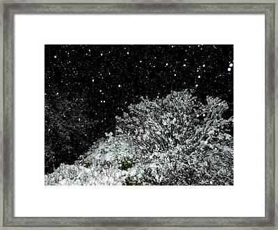 Mesmerizing Snowfall  Framed Print