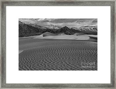 Mesquite Dunes Black And White Framed Print by Adam Jewell
