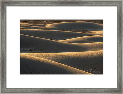 Mesquite Dunes Framed Print by Peter McCracken