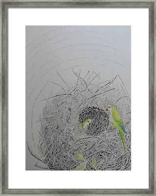 Message To The Birds Framed Print