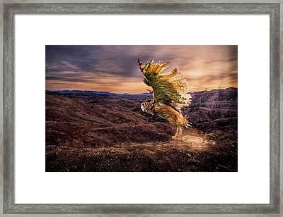 Messenger Of Hope Framed Print
