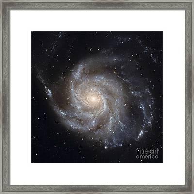 Messier 101, The Pinwheel Galaxy Framed Print by Stocktrek Images