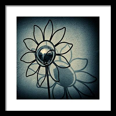 Sunflower Framed Prints