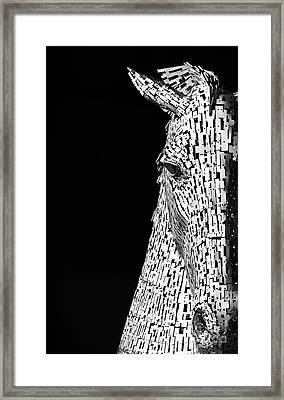 Metal Horse Framed Print by Tim Gainey