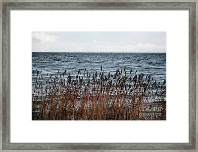 Metallic Sea Framed Print