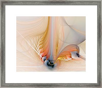 Metamorphosis Framed Print by Amanda Moore