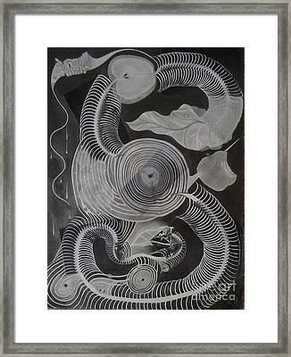 Metamorphosis Framed Print by Katerina Wert