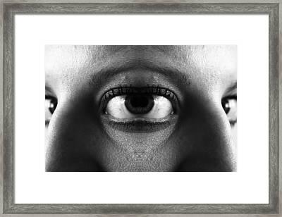 Metamorphosis Framed Print by Lauren Brada