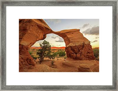 Metate Arch Framed Print