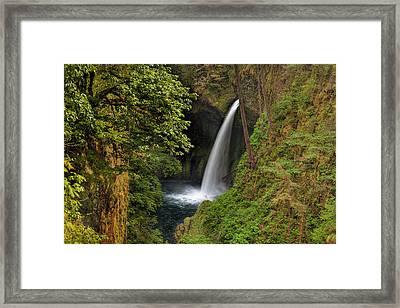 Metlako Falls In Spring Framed Print by David Gn