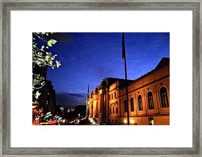 Framed Print featuring the photograph Metropolitan Museum Of Art Nyc by Vannetta Ferguson
