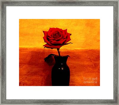 Mexicalli Rose Framed Print by Marsha Heiken