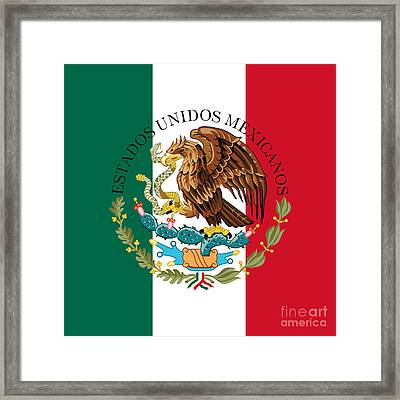 Mexican Flag And Coat Of Arms  Framed Print by Bruce Stanfield