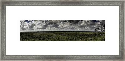 Mexican Jungle Panoramic Framed Print