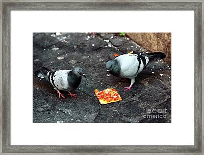 Mexican Standoff Framed Print by John Rizzuto