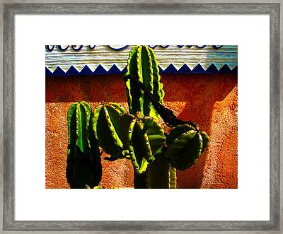 Mexican Style  Framed Print