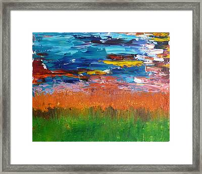 Mexican Sunset Framed Print by Peter Silkov