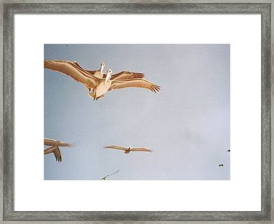 Mexico Framed Print by Laura Burchfield
