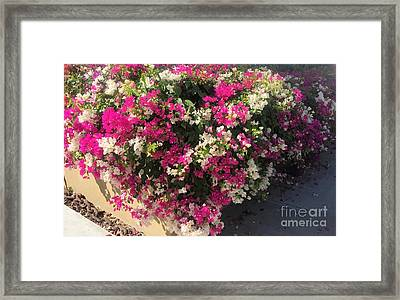 Framed Print featuring the photograph Mexico Memories 4 by Victor K
