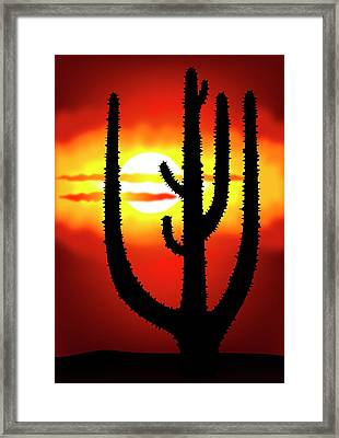 Mexico Sunset Framed Print by Michal Boubin