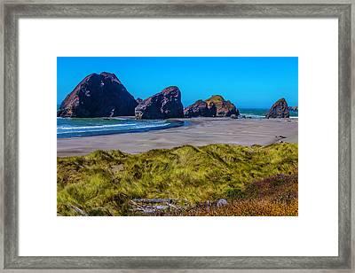 Meyers Creek Beach Framed Print by Garry Gay