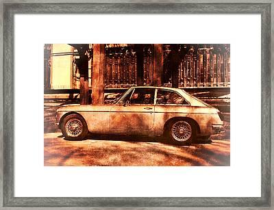 Mg B  Framed Print by Nicole Frischlich