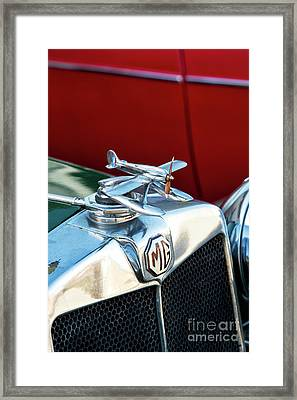 Mg Airplane Hood Ornament  Framed Print by Tim Gainey