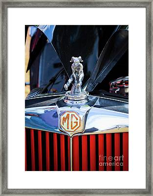 Framed Print featuring the photograph Mg Fool by Chris Dutton