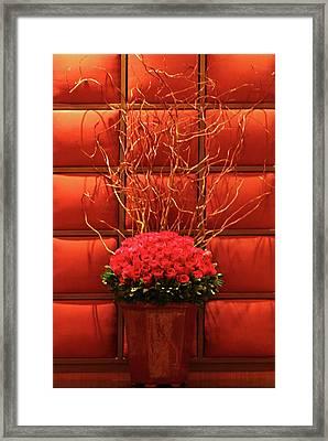 Mgm Red Rose Display Framed Print by Linda Phelps