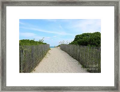 Miami Beach Path With Fence Framed Print by Carol Groenen