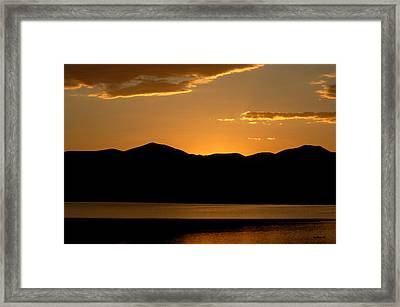Miami Gold Framed Print by Michael Knight