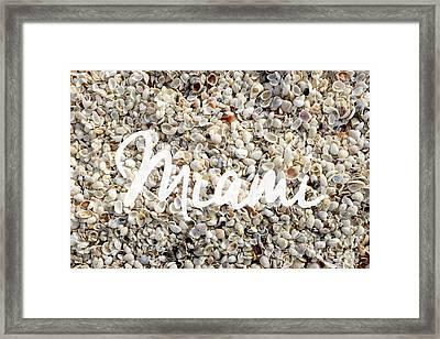 Miami Seashells Framed Print by Edward Fielding