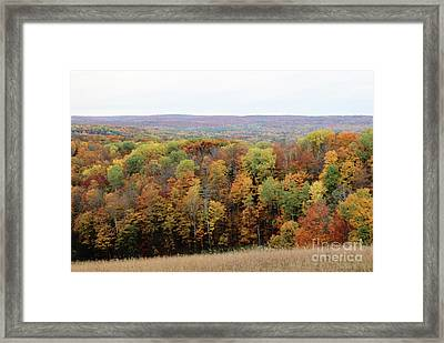 Michigan Autumn Framed Print
