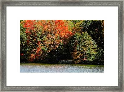 Michigan Fall Colors 5  Framed Print by Scott Hovind