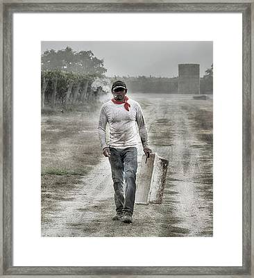 Michoacan Framed Print by Stan Angel