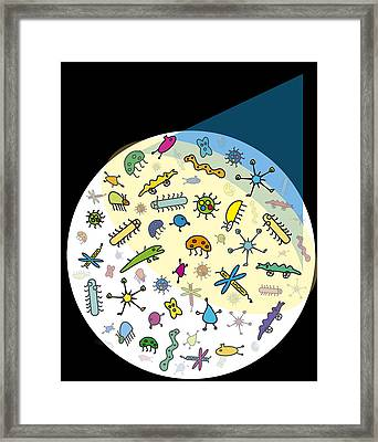 Microbes Framed Print by David Nicholls