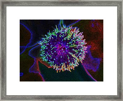 Microorganism Framed Print