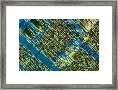 Microprocessor Framed Print by Michael W. Davidson