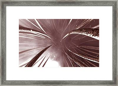 Microscopic Nerve Endings Framed Print