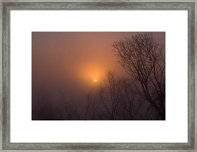 Mid Day Fog Framed Print by Naman Imagery